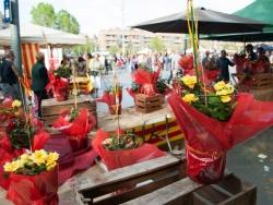 23-04-2015 - Roses, llibres i entitats a la plaça de Pau Picasso