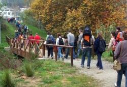 21-11-2009 - Excursió guiada per les vinyes de Montornès