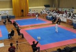 26-11-2011 - XVIè Torneig de Karate