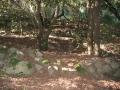 Restes del poblat ibèric de Sant Miquel
