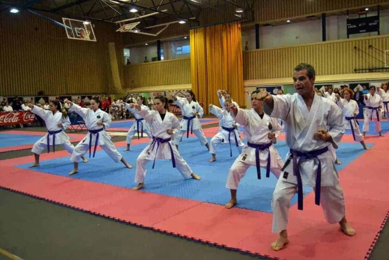 Una de les actuacions del Club Karate Montornès (Imatge d'arxiu)