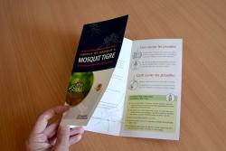 Campanya informativa i de prevenció del mosquit tigre