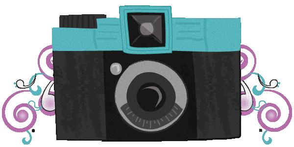 Associació Fotogràfica Montornès