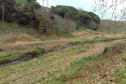 Llera del Riu Mogent