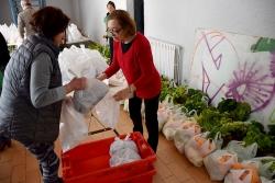 Preparació dels lots a Can Xerracan
