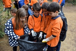 Neteja del bosc del Pedró per part d'alumnes de l'Escola Mogent