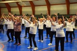 Sessió de gimnàstica per a la gent gran a la carpa polivalent El Sorralet