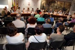 Ple d'aprovació de l'organització municipal per al mandat 2019-2023