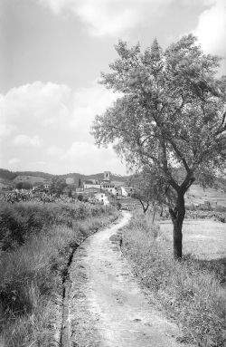 El camí de la Justada o camí Antic de Vallromanes a la dècada de 1950. Autor: Albert Bellós Agulló. IEFC