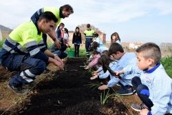 La Brigada Jove col·labora amb l'Escola Mogent en el manteniment de l'hort