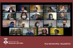Captura del Ple ordinari telemàtic del mes d'octubre