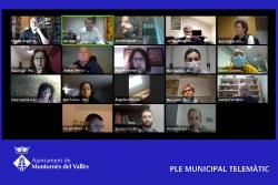 Captura del Ple ordinari telemàtic del mes de novembre