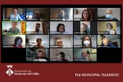 Un moment del Ple ordinari telemàtic del mes de juliol
