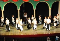 Festival de dansa i música